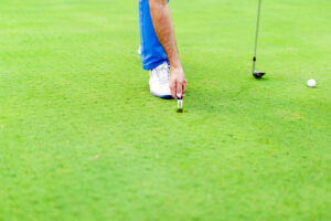 Replacing Divots, Professionally, Personally